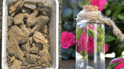 मुल्तानी मिट्टी और गुलाब जल के फायदे