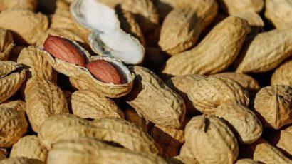 मूंगफली खाने के फायदे और नुकसान