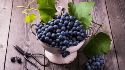 काले अंगूर खाने के 10 फायदे – झड़ते बालों की समस्या से छुटकारा