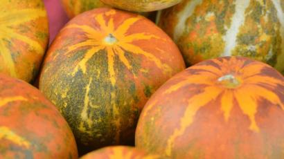 खरबूजा खाने के फायदे और नुकसान – Muskmelon Benefits