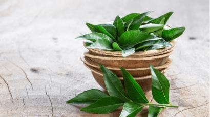 करी पत्ते के फायदे और नुकसान – Curry Leaves Benefits