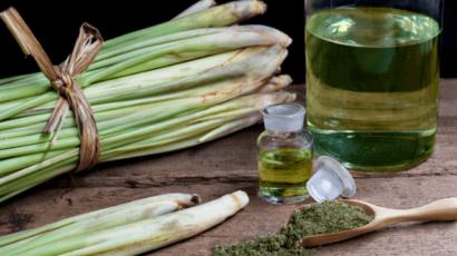 लेमन ग्रास के फायदे और नुकसान – Lemongrass