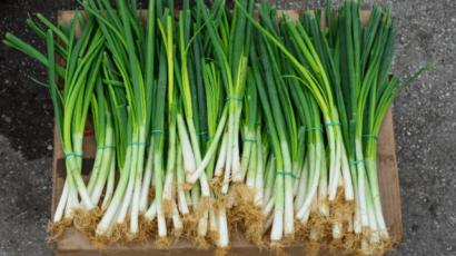 हरे प्याज के फायदे और नुकसान – Green Onions