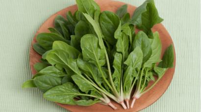 कच्चा पालक खाने के फायदे – Raw Spinach Benefits