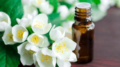 चमेली के तेल के फायदे और नुकसान – Jasmine oil Benefits