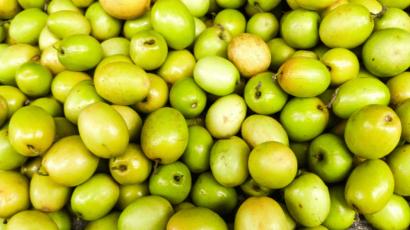 बेर के फायदे और नुकसान – Jujube Fruit (Ber)