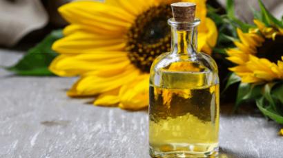 सूरजमुखी के तेल के फायदे और नुकसान – Sunflower Oil