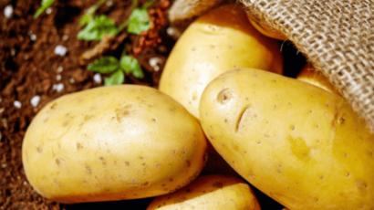 आलू खाने के फायदे एवं नुकसान – Potato