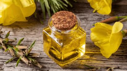 ईवनिंग प्रिमरोज तेल के फायदे और नुकसान – Evening Primrose oil