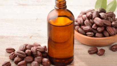 जोजोबा ऑयल के फायदे और नुकसान – Jojoba Oil