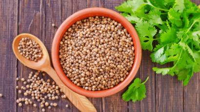 धनिया के बीज के फायदे और नुकसान – Coriander Seeds