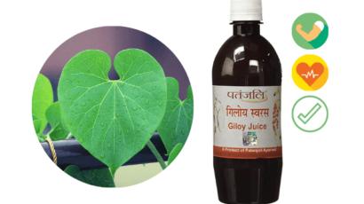पतंजलि गिलोय जूस के फायदे – Patanjali Giloy Juice