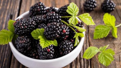 ब्लैकबेरी के फायदे और नुकसान – Blackberry