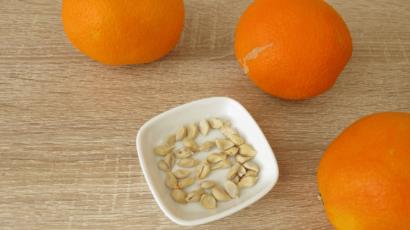 संतरे के बीज के फायदे – Benefits of Orange Seeds