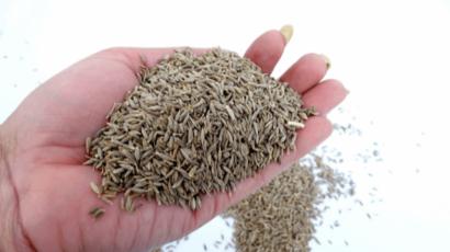 खाली पेट जीरा खाने के फायदे