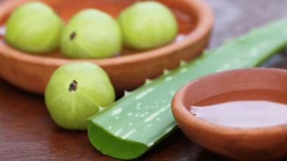 एलोवेरा और आंवला जूस के फायदे – Benefits of Aloe Vera and Amla Juice