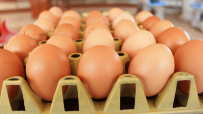 देसी अंडा खाने के फायदे